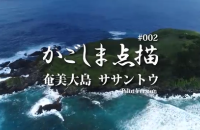 かごしま点描 奄美大島 ササントウ