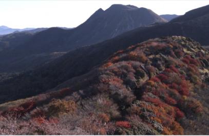 NHKさわやか自然百景「大分 くじゅう連山」